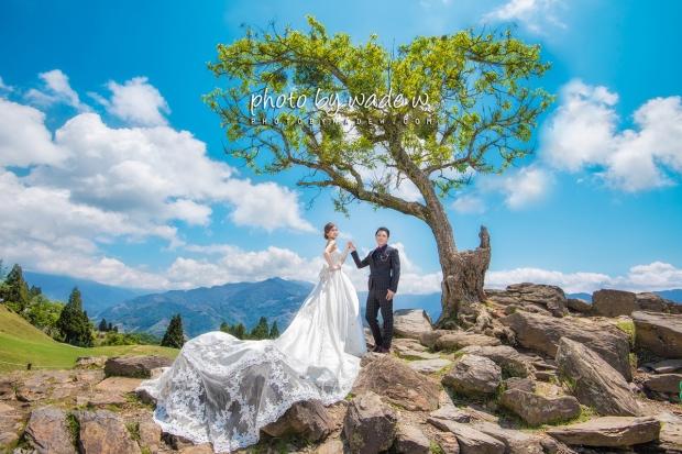 2 Taichung PRe-wedding 台中 清境 南投縣 老英格蘭 青青草原 格林奇幻森林 婚紗攝影基地 1200