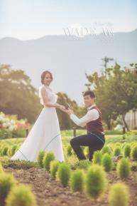 pre-wedding-日本-Toyko-輕井澤-河口湖-東京鐵塔-·71 copy
